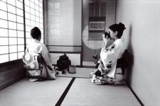 France Culture : L'art du thé au Japon